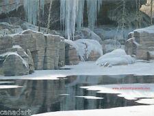 Robert BATEMAN Winter Reflection LTD art Giclee Canvas COA Black Timber Wolf