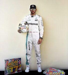 Lewis Hamilton Display Stand Figure NEW Mercedes F1 Formula 1 British Champion