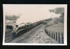 Devon RAILWAY loco 60022 Mallard train near Tiverton 1963 photograph