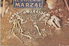 BF19871 aven grotte marzal le chien de marzal  france front/back image