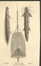 KENYA PIQUE PANIER DE PECHE WA-POKOMO GRAVURE IMAGE 1890
