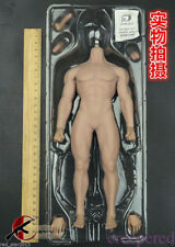 1/6 Phicen M30 Super-Flexible Male Seamless Muscular Only Body  IN STOCK