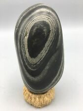 Y2 Natural polished Viewing stone suiseki-powerful spiderweb pattern specimen