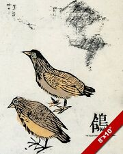 MING PIGEONS BIRDS CHINESE HERB ANIMAL PAINTING PET ART REAL CANVAS PRINT