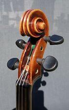 Ältere Geige Spielbereit