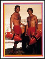 David Charvet: Matt Brody #80 Baywatch Merlin 1993 Sticker (C1255)