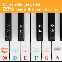 37/49/54/61/88 Key Transparent Detachable Music Decal Piano Keyboard Sticker New