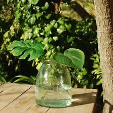 Clear Recycled Glass 1L Jar, Botanical Bottle Vase Flower Stem Vase, 11x15cm