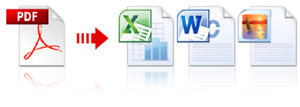 Nitro Pro v.10 PDF Converter to All Word Excel Image Text HTML Software