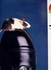ANDY PRATT notjust for dancing HOLLAND 1985 EX LP