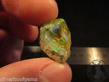 15.05ct Ethiopian Rough Natural Welo Opal