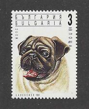Dog Art Head Study Portrait Postage Stamp PUG MOPS CARLINO Bulgaria 1991 MNH