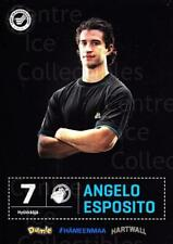 2012-13 Finnish Cardset #283 Angelo Esposito