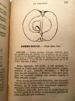1880 LE CIDRE POMMES POIRES ETUDE DES FRUITS BOISSONS ALCOOL LIVRE ILLUSTRE RARE