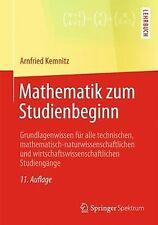 Mathematik zum Studienbeginn: Grundlagenwissen für ... | Buch | Zustand sehr gut
