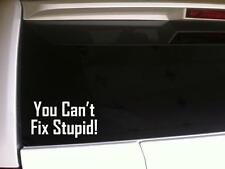 "Can't Fix Stupid Vinyl Car Decal 6"" *E79 vinyl funny sticker words phrases humor"