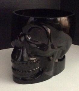 Pottery Barn Skeleton Skull Ice Bucket Black Glass Halloween Gothic Barware New