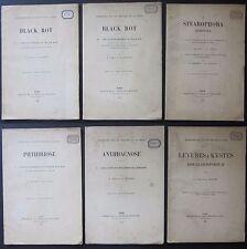 1904-06 Viticoltura BLACK ROT-STEAROPHORA-GLOEOSPORIUM Pierre Viala Viticulture