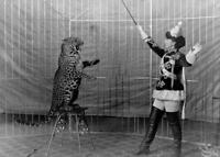 Antique photo ... Circus Trainer & Leopard Early 1900's ... Photo Print 5x7