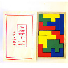 Small Rainbow Colorful Pentominoes wood brain teaser puzzle game w/cover toy