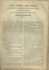 Articolo Sulla Scarsità degli Uccelli ed Inevitabili Conseguenze V. Fusina 1869