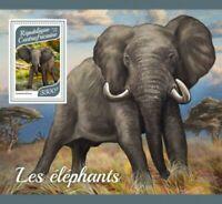 Central Africa - 2017 Elephants - Stamp Souvenir Sheet - CA17910b