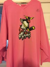 2008-09 Ephl Rockhoppers Signed Kyle Bozoian Game Worn Pink At The Rink Jersey
