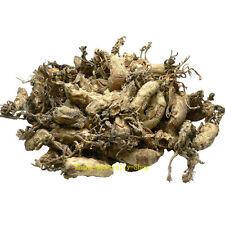 Supreme Chinese Famous Rare Nourishing Herb Tea, Wild Cordyceps Sobolifera 250g