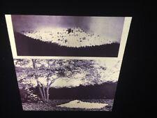 "Louise Bourgeois ""November 72"" 35mm Confessional Sculpture Art Slide"