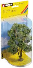 NOCH 21660 più robusto Acacia ca 15 altezza cm nuovo e conf. orig.