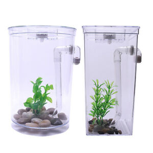 Clear Desktop Aquarium LED Self Cleaning Decorative Desk Fish Tank Ornament