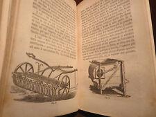 Agraria Agricoltura - Cuppari : Manuale dell'Agricoltore - Barbera 1870 Frantoio
