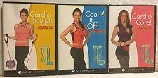 3 Debbie Siebers Slim in 6 Express DVD lot, Cardio Sculpt Core Cool it Off