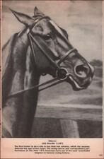LOU DILLON, Horse, Standardbred Trotter, Harness, George Ford Morris, 1952
