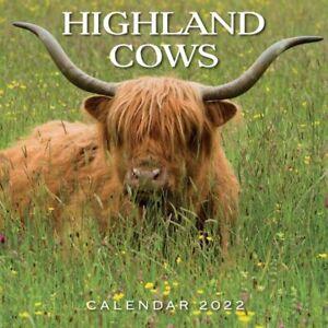Highland Cows - 2022 Square Wall Calendar