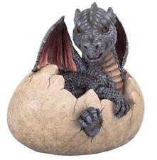 New - Garden Dragon Egg