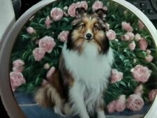 Danbury Mint Shetland Sheepdogs Plate