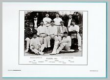 CRICKET  -  UNMOUNTED CRICKET TEAM PRINT - PLAYERS - 1895