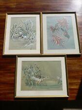 3 South African Prints Simon Calburn Framed