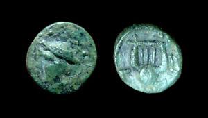AE11 Sestos - Thrace (Hermes / Lyre)