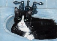 BCB Tuxedo Cat Time to Cool in Sink  Print of Painting ACEO 2 1/2 x 3 1/2 Inches