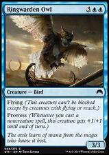 ELD GUFO DELL/'ARCANISTA MAGIC MTG 4x ARCANIST/'s OWL EXC