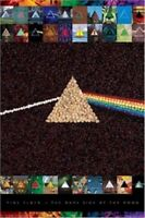PINK FLOYD ~ PISTACHIOS 24x36 MUSIC POSTER Dark Side Of The Moon NEW/ROLLED!