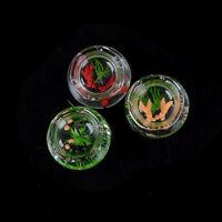 1:12 Miniatur Glas Aquarium Transparent Aquarium Puppenhaus Dekor HH