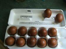 Black Copper Maran Hatching Eggs 10+