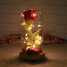 Red Forever LED Glowing Flower Immortal Fresh Rose in Glass Mother's Day Gift