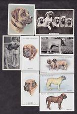 9 Different Vintage MASTIFF Tobacco/Cigarette Dog Cards