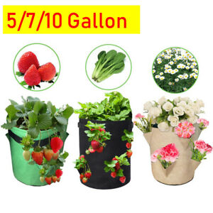 Fabric Plant Grow Bag Potato Strawberry Planter Bag For Outdoor Garden Vegetable