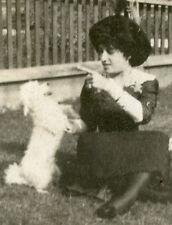 ANTIQUE VINTAGE 1913 WHITE DOG TRICKS PUPPY FAMILY PRETTY LADY ARTISTIC PHOTO