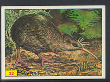 Panini Birds 1978 Sticker No 22 (S406)